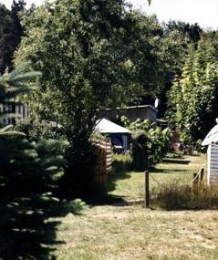 wohnwagenblick-sommer3-mit-viel-gruen